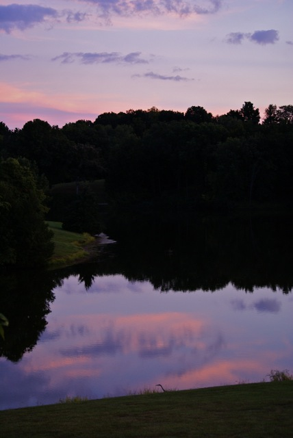Evening Lake Reflection - note heron at bottom.