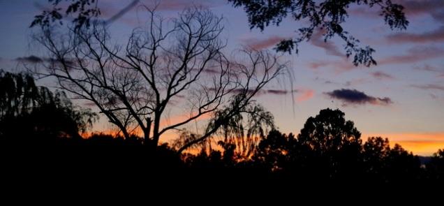 Closing sunset